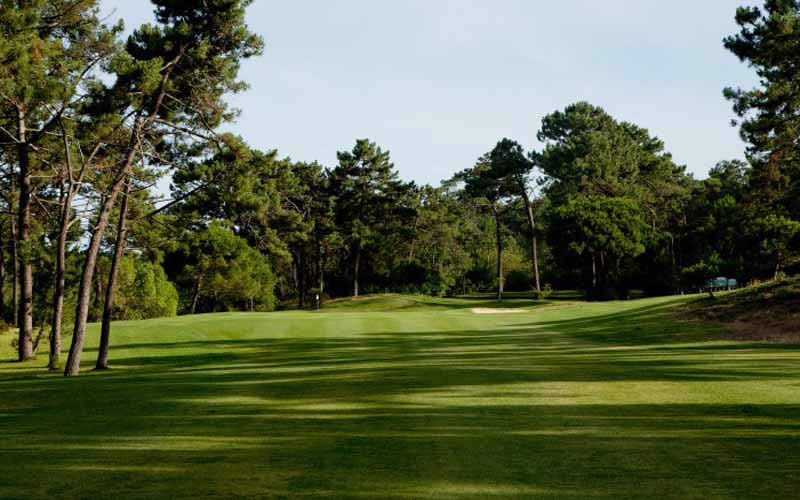 pine trees line the 12th fairway of Aroeira 1 golf course