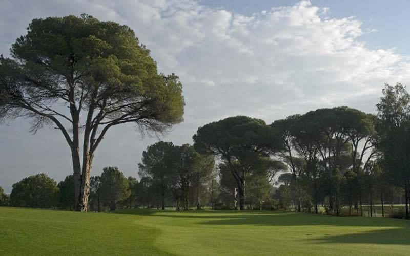the 5th fairway on the cornelia faldo golf course