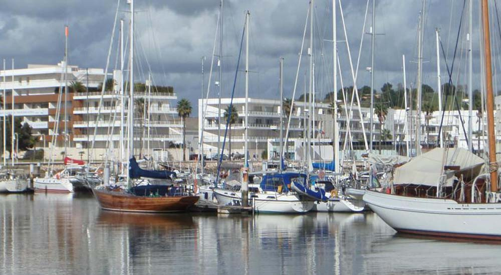 a view of the marina