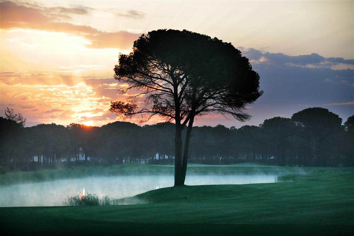 early morning mist on the montgomerie royal maxx golf course