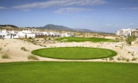 immaculate tee boxes on alhama signature golf course
