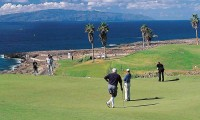 amarilla golf course - Tenerife