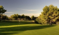 the 5th green at Bendinat