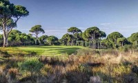 a patch of heathland on the Cornelia Faldo golf course