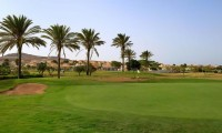 palm trees lining the fairway at Fuerteventura Golf Club