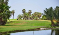 one of the lakes on golf del sur