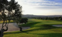 the 5th fairway of la finca golf course